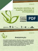 C1 E3 PPT Validacao Cientifica de Plantas Medicinais
