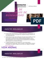 CARTILLA DE PROTOCOLOS DE BIOSEGURIDAD ACTIVIDADN 2.1