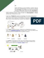 10 CADENAS TROFICAS.docx