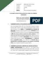 Recurso de Apelacion de Sentencia Penal -Sentencia - Pedro Luis Llanco Huaranga - Firme