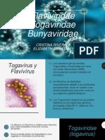Flaviviridae  Togaviridae  Bunyaviridae.pptx