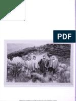 179-Texto del artículo-356-1-10-20140210.pdf