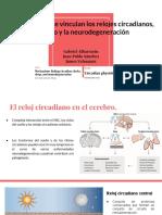 Ciclo circadiano.pdf