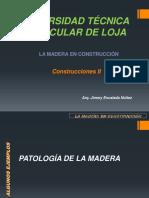IX.- MADERA_PATOLOGÍAS