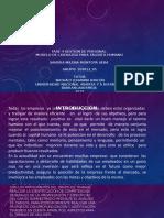presentacion fase 4