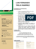 Curriculum-Vitae Fer Trejo