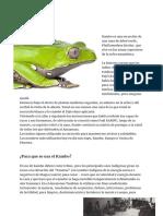 Información Kambo.pdf