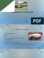 Toxemia de gestacion.pptx