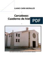 DESARROLLO HISTÓRICO DE CARCABOSO