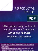 REPRODUCTIVE SYSTEM.pptx