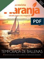 Revista Naranja Edición 13
