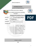 CONTAMINACIÓN DEL MEDIO AMBIENTE (HUARAZ)