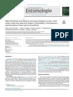 Araujo et al. 2018 Molecular