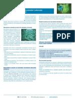 Microbiota_colonului_info