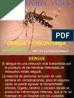 Dengue- chikunyunga
