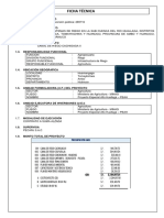 1.2 FICHA TECNICA CANAL CACHIGAGA II.docx