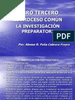 INVESTIGACION PREPARATORIA PP 2 (1)