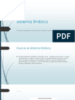 sistema limbico power point