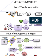 8. Immunogensis Endog
