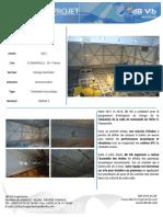 EDF_FLAMANVILLE-dbvib.pdf
