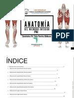 Anatomia_Humana_I_Musculos_Miembro_Infer