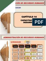 CAPACITACION Y DESARROLLO EMPRESARIAL