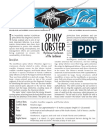 Sea Stats - Spiny Lobster