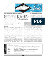 Sea Stats Bonefish