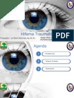 CSS HIFEMA (1).pptx