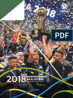 2018-Resumen-Ejecutivo-CONMEBOL.pdf