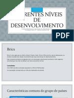Diferentes Níveis de desenvolvimento- Economia.pptx