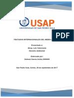 DERECHO AMBIENTAL TRATADOS INTERNACIONALES DEL MEDIO AMBIENTE.docx