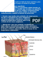 Presentacion1Quemados (1)