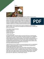 Terapêuticas através de banhos de imersão usado em religiões afro-brasileiras