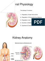 Week12 13 RENAL Physiology.ppt