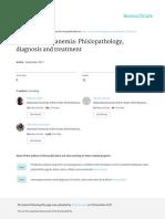 inflammatory anemia phisiopathology, diagnosis and treatment