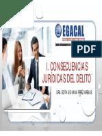 01-02-17__GPA_PPT_CAP_CONS._JURIDICAS_DEL_DELITO2