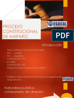 20-2-17_AOR_CAP_PROCESO_DE_AMPARO_Alfredo_20_de__febrero_2017