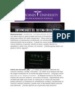 Enfermedades del Sistema Circulatorio (D University)