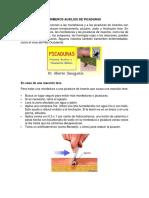 PRIMEROS AUXILIOS DE PICADURAS