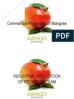 Industrial-Application-Process-Steam