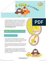 Activity-Sheet-The-Life-Cycle-of-A-Chicken-Y-1-2