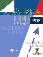 Álgebra Lineal. Buitrago Alemán, Rocio