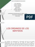 FUNDAMENTOS BIOLOGICOS 1