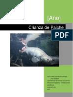 Manual Paiche v2.docx