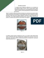 Resultados y Discusión (microbiologia)