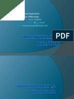 Clese 2 - Fisiopatologia Hematologic