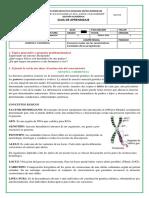 geneticayh1580336581