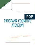 ATENCION - CONCENTRACION