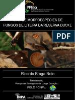guiademorfoespciesdefungosdeliteiradareservaducke-101219100956-phpapp02.pdf